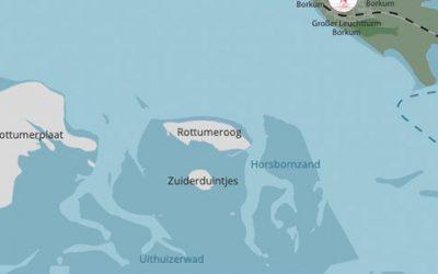 Zuiderduintjes